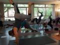 Yogatag Juli 2017 im elbdeich e.V.